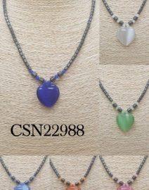 CSN22988